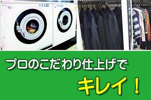 ハナコロモ洗濯機